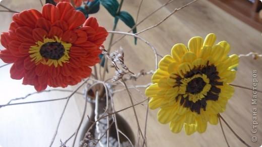 Циния-воплощение неброской красоты органического сада в самом его расцвете. фото 1