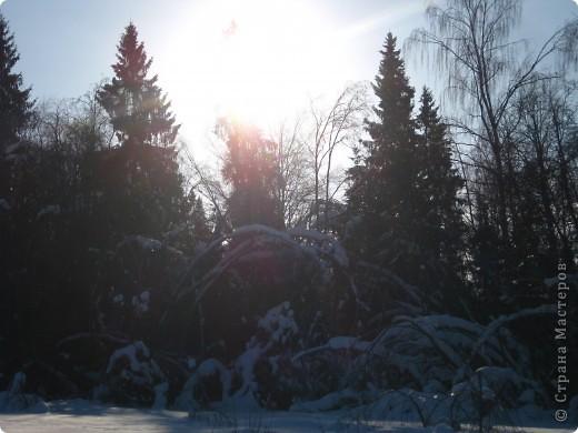 Ледяной дождь, мороз да снег в этом году таких чудес натворили, что даже и выбрать-то самое интересное сложно. фото 1
