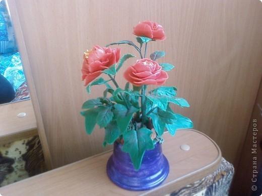 Первый опыт, Аленький цветочек. фото 2