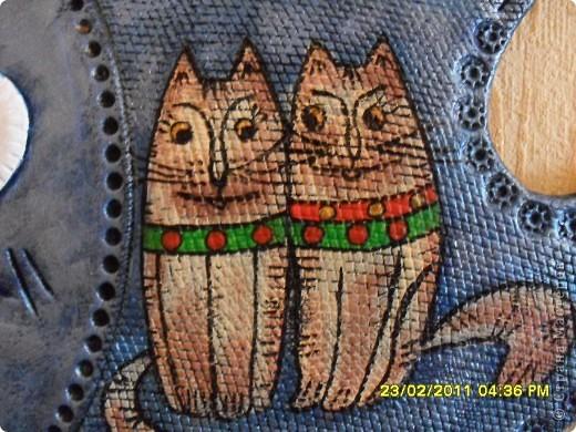 рыба кошачья фото 2