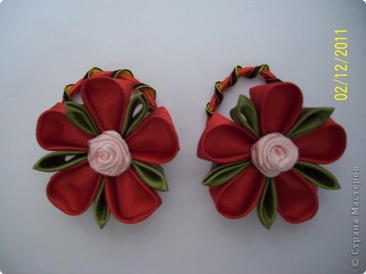 """Муж назвал эти цветочки смешным словом """"кразелы"""" от слов красный и зеленый. фото 1"""
