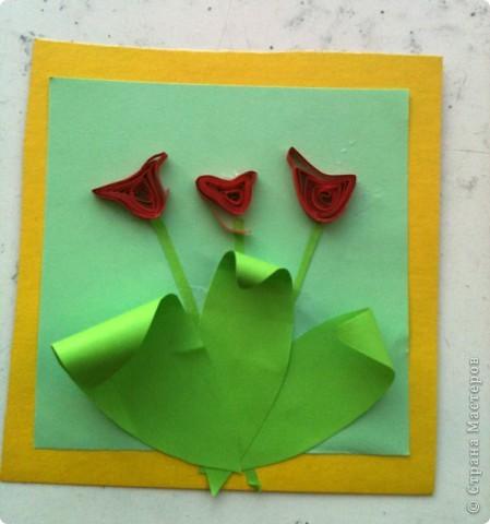 Тюльпанчики  фото 4