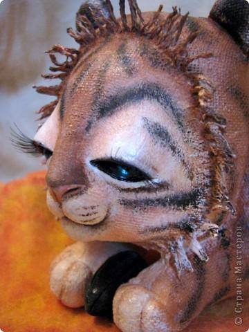 Уже прошел целый год, с рождения первого тигренка, который нежно греет семечку подсолнуха своим дыханием)) И вот,  у меня родился пятый тигруличка)) На этот раз - это нежная девочка фото 4