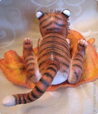 Уже прошел целый год, с рождения первого тигренка, который нежно греет семечку подсолнуха своим дыханием)) И вот,  у меня родился пятый тигруличка)) На этот раз - это нежная девочка фото 9