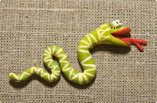 змея фото 1