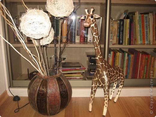 Жираф. фото 1