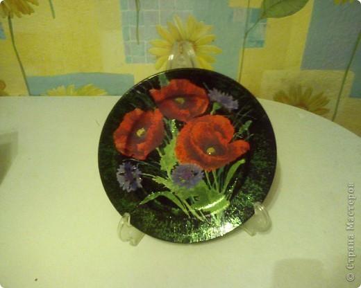 мои тарелочки 2009год фото 2