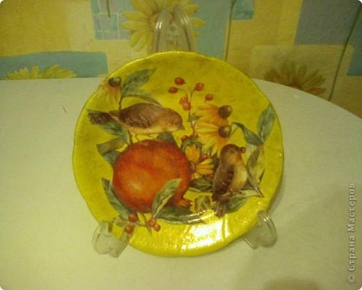 мои тарелочки 2009год фото 3
