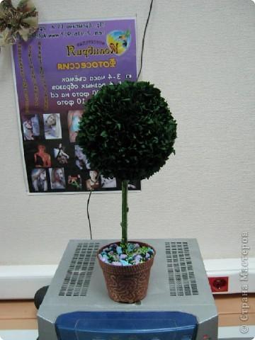 И мне тоже захотелось сделать деревце!:-))) фото 2