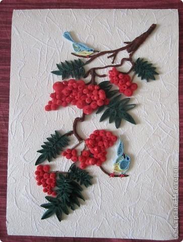 Завтра первый день весны, а у меня осень-рябинка поспела, птицы животики набивают перед зимой. фото 2