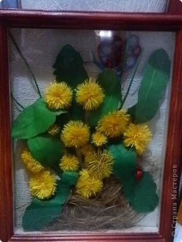 """Как хочется скорой весны, когда распустятся желтые пушистики, нежно зеленая травка. Глядя на одуванчики- думаешь """"настоящее солнышко"""". фото 1"""