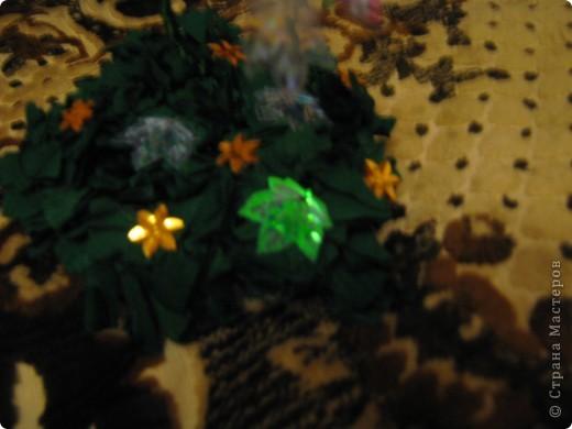 Очень долго собиралась сделать такую красоту и вот наконец оно выросло мое кленовое деревце.Жаль что фотка не передает цвет листиков. Они обалденно переливаются от красного до зеленого цвета. фото 3