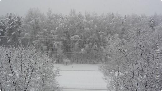 Красотища из моего окна... фото 6