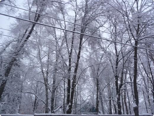 Красотища из моего окна... фото 2