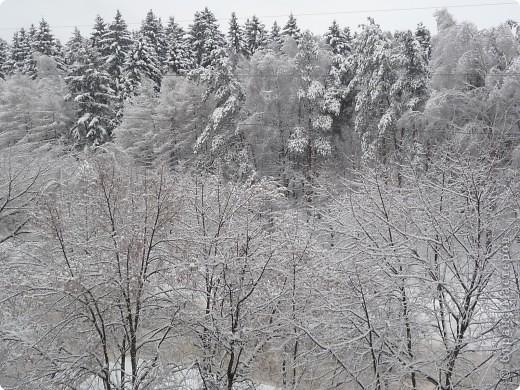 Красотища из моего окна... фото 1