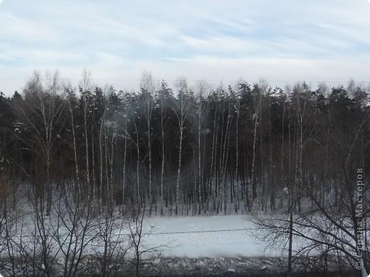 Красотища из моего окна... фото 4
