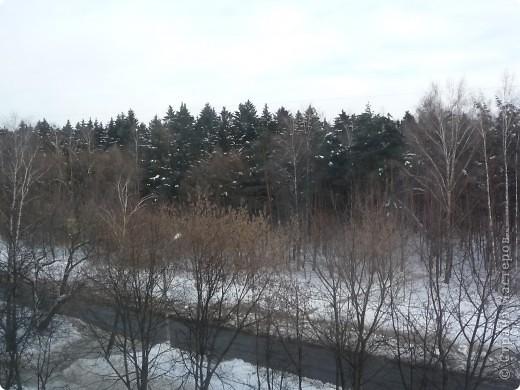 Красотища из моего окна... фото 3