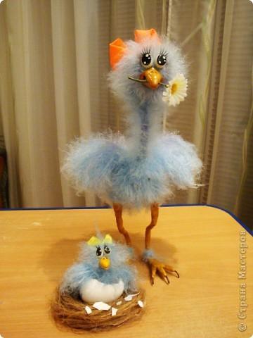 Сделала птичку по МК Вдохновленной,спасибо ей огромное за замечательный МК ! http://stranamasterov.ru/node/121674?c=favorite фото 1