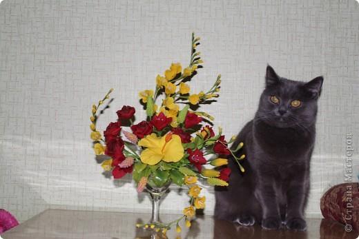 Моя кошка-Нюшка))))любит грызть цветочки фото 2