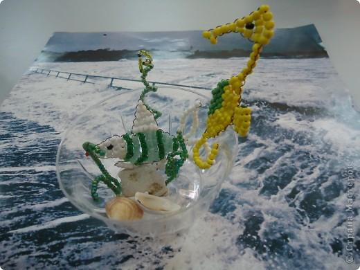А на море-океане... фото 4