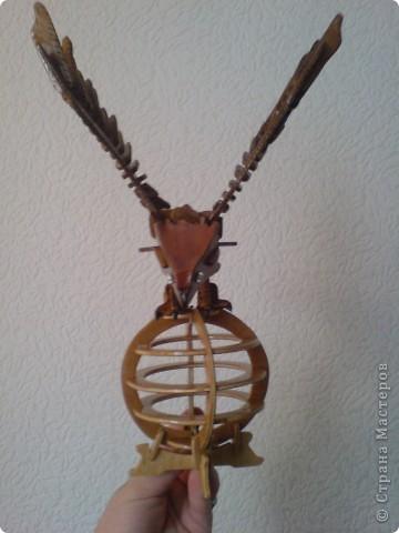 Орел фото 1