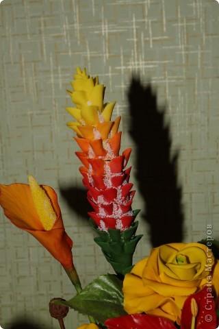 Моя кошка-Нюшка))))любит грызть цветочки фото 4