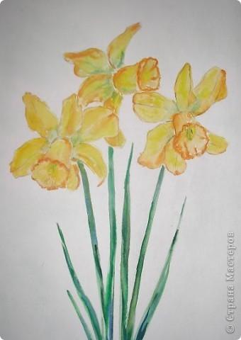 Это любимый подснежник - символ весны и пробуждения. Такой хрупкий и нежный.  фото 4