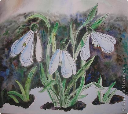 Это любимый подснежник - символ весны и пробуждения. Такой хрупкий и нежный.  фото 1