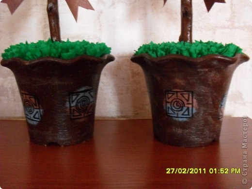 Кофейные деревья на заказ фото 2