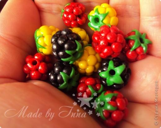 Цветочно-ягодные полепушки. фото 1