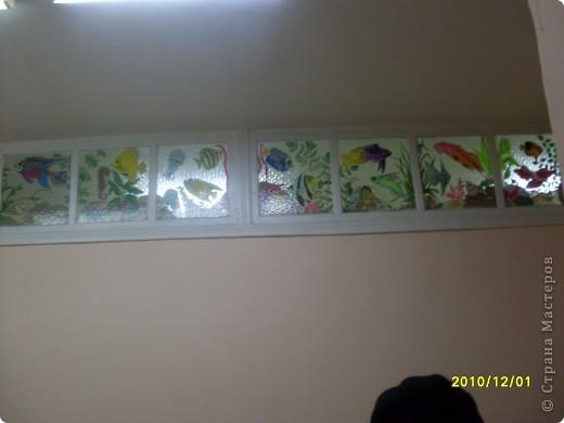Роспись верхних окон, аквариум на стекле. фото 3