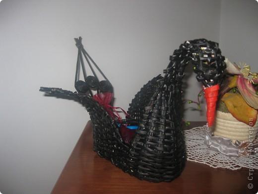 мой лебедь фото 2