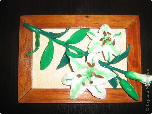 Вот такие цветы получились , а потом можно залить универсальным лаком. фото 1