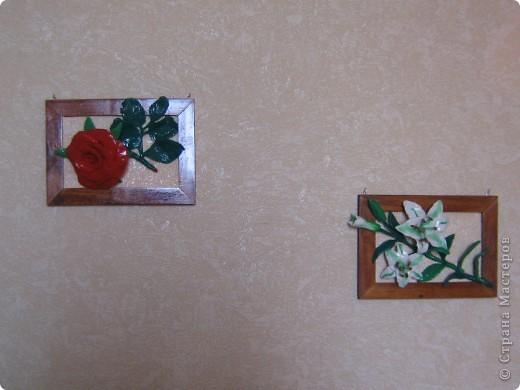 Вот такие цветы получились , а потом можно залить универсальным лаком. фото 4