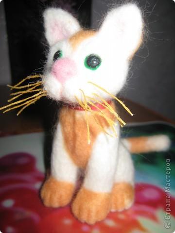 Пока весь февраль была лишена возможности выйти в Интернет, родился вот такой котёнок. фото 6