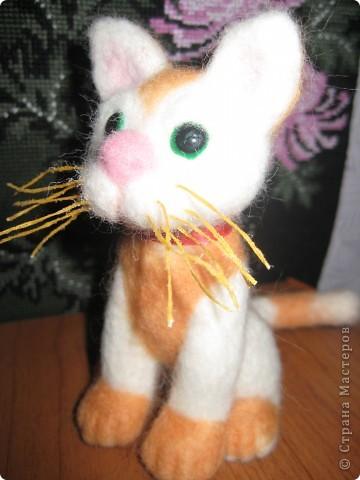 Пока весь февраль была лишена возможности выйти в Интернет, родился вот такой котёнок. фото 1