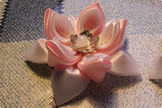 Розовый лотос. фото 1