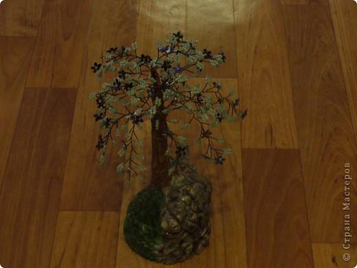 Небольшая орхидея. Мой первый опыт в плетении(больших) цветов. фото 3