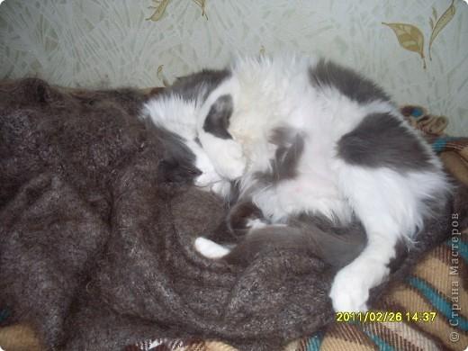 Спит фото 1