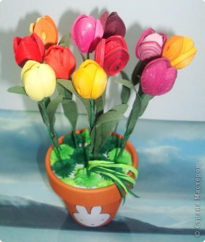Это мои тюльпанчики в горшочке. Спасибо большое за МК Оленьке Osonikе: http://stranamasterov.ru/node/73209 фото 1