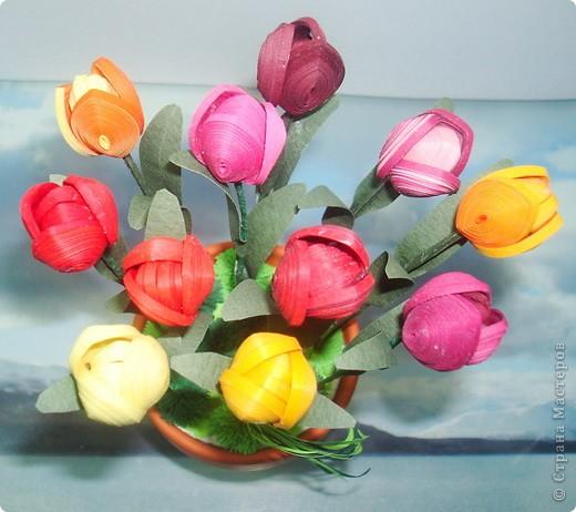 Это мои тюльпанчики в горшочке. Спасибо большое за МК Оленьке Osonikе: http://stranamasterov.ru/node/73209 фото 2