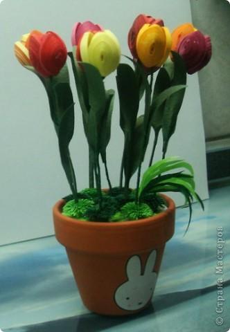 Это мои тюльпанчики в горшочке. Спасибо большое за МК Оленьке Osonikе: http://stranamasterov.ru/node/73209 фото 4