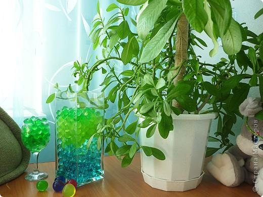 АкваГрунт - шарики, полимерный материал, обладающий уникальной способностью поглощать и удерживать при набухании до 2-х л обычной воды. Полимер изменяется в размерах до 10-15 раз от первоначального размера. Основной особенностью АкваГрунта, является способность впитывать и удерживать в своей структуре большой объем воды и впоследствии отдавать ее корням растения по мере необходимости. АкваГрунт – декоративная почва для живых цветов. Удивительный материал для создания цветочных композиций. Можно использовать индивидуально как аромалампу при добавлении аромамасла.    Я же решила использовать аквагрунт для декора.      Думаю, смотрится неплохо. фото 5