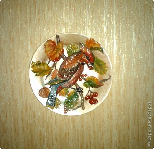 Свиристель (панно на тарелке). фото 1