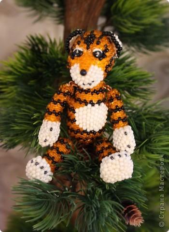 Тигр... фото 1