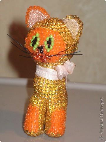 Золотой котенок