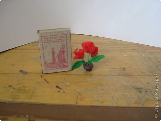 вот вам спичечный коробок,что бы вы имели представление о размере моих розочек