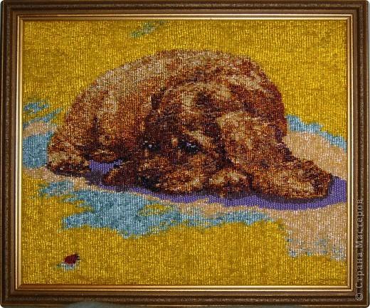 опаловый щенок.27 цветов.авторская подборка  цветов. фото 1