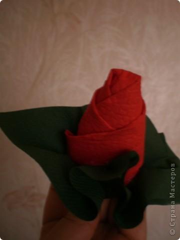 Нужны: 2 салфетки белого цвета 13см./13см., 2 красного цвета/можно 3/ 17 см./17 см., 1 зеленого цвета 13/13, клей фото 13