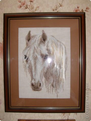 Моя доченька обожает лошадей. Это подарок для неё фото 1